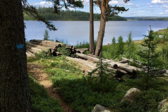Finnskogleden-1-scaled