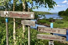 Vandring på Finnskogleden ved Haldammen