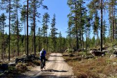 Sykkeltur-Finnskogen-scaled